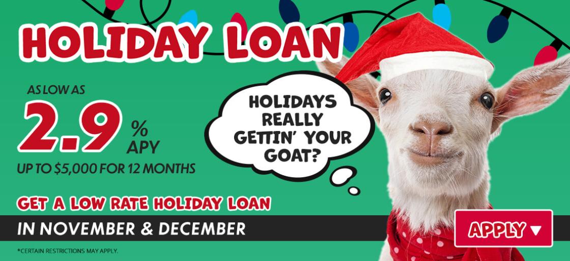 Holiday Loans 2.9%